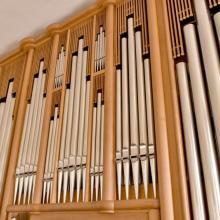 Orgel Heidenreichstein matthias ledwinka